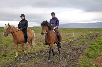 Horse Riding Tour North